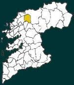 Cuntis